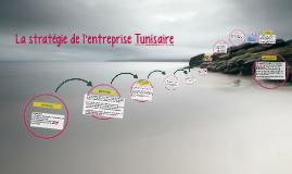 La stratégie de l'entreprise Tunisaire