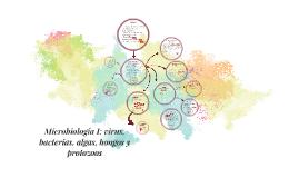 Copy of Microbiología I: virus, bacterias, algas, hongos y protozoos