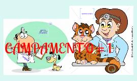 Copy of CAMPAMENTO 1