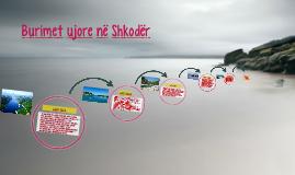 Copy of Burimet ujore në Shkodër