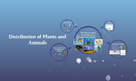 Distribution of Plants and Animals