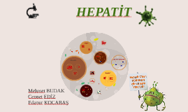 Copy of Hepatit B
