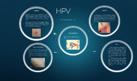 Copy of HPV