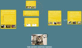 Tree House's Adoption Process