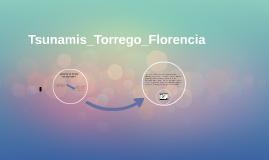 Tsunamis_Torrego_Florencia