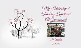 My Internship I Experience