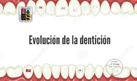 Evolución de la dentición
