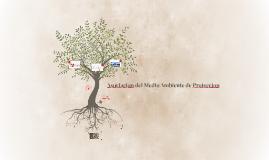 Asociacion del Medio Ambiente de Proteccion
