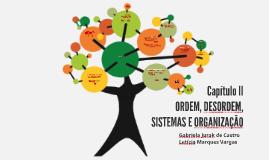 Ordem, Desordem, sistemas e organização