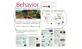 Communication 3: Behavior