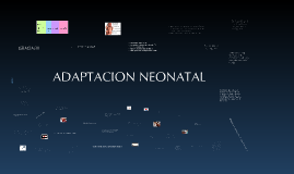 Copy of Copy of Adaptacion neonatal