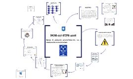 Copy of NOM-017-STPS-2008