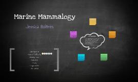 Marine Mammalogy