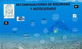 RECOMENDACIONES DE SEGURIDAD Y AUTOCUIDADO