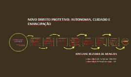 O Novo Direito Protetivo no Brasil