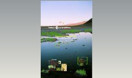 2017. Los Embriófitos. Los Briófitos (T14) para Ambientales
