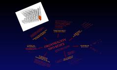 ORGANIZACION TIPO REDES