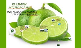 Copy of EL LIMON MICHOACANO