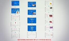 Copy of MICROORGANISMOS DE LA CAVIDAD BUCAL