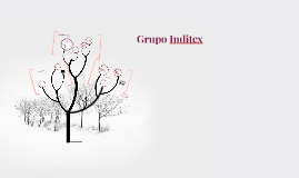 Copy of Grupo Inditex