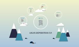 LIGAS DEPORTIVAS T.P.