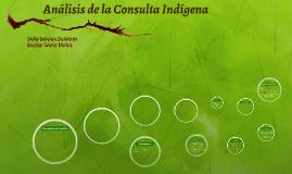 Análisis de la Consulta Indígena