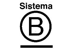 Resumen Sistema B