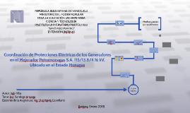 Coordinación de Protecciones Eléctricas de los Generadores
