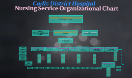 Nursing Service Organizational Chart