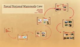 Parcul Național Mammoth Cave