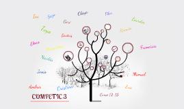 Copy of COMPETIC 3 Curso 12-13