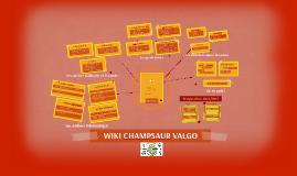 Copy of Copy of WIKI CHAMPSAUR VALGO