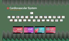 Anatomy & Physiology: Cardiovascular System