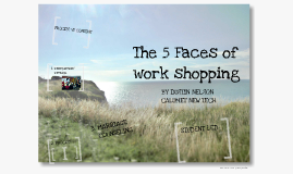 5 Faces of Workshopping