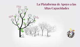 Copy of Copy of Qué es la Plataforma de Apoyo a las AACC?