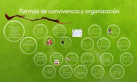 Formas de convivencia y organización
