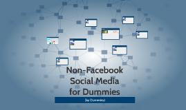 Non-Facebook Social Media for Dummies