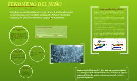 FENOMENO DEL NIÑO
