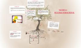 Copy of MODELO MULTIGENERACIONAL