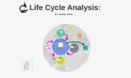 Life Cycle Analysis: Wooden Pencil