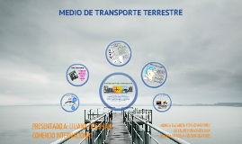 MEDIO DE TRANSPORTE TERRESTRE