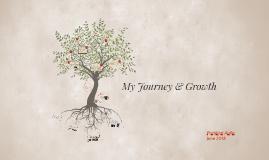 Capstone: My Journey