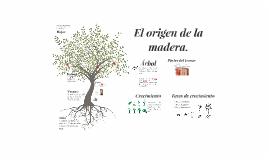Copy of El origen de la madera.