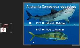 Anatomia dos peixes (Ictiologia Pesqueira 2019)