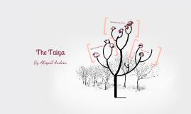 Taiga Biome Project