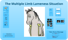 multiple limb lameness