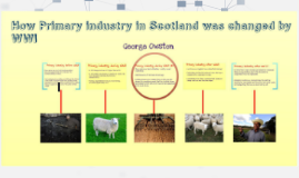 The effect of WW1 on the industrial economy of Scotland