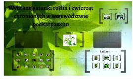 Copy of Wybrane gatunki roślin i zwierząt chronionych w województwie