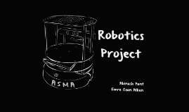Robotics Project