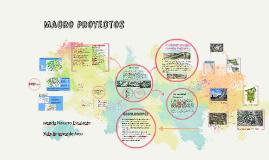 Macro-proyectos
